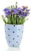 Cornflowers in vase isolated on white — Stock Photo