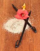 Vanilla pods and vanilla sugar on wooden background close-up — Stock Photo