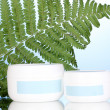Stock Photo: Jar of cream with branch of fern on blue background