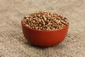 семена кориандра кучи в чашу на холсте фон крупным планом — Стоковое фото