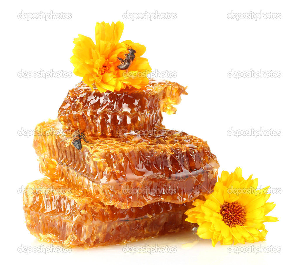 Sweet honeycomb with honey, bee and flowers, isolated on white — Stock Photo #12042919