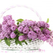 Royalty-Free Stock Photo: Beautiful lilac flowers in basket isolated on white