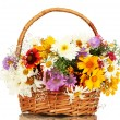 Beautiful bouquet of bright wildflowers in basket, isolated on white — Stock Photo #12065987