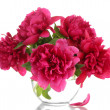 Beautiful pink peonies in glass vase isolated on white — Stock Photo #12090026