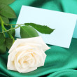 Foto Stock: Beautiful rose on green cloth