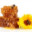 Sweet honeycomb with honey, bee and flower, isolated on white — Stock Photo #12090629