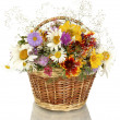 Beautiful bouquet of bright wildflowers in basket, isolated on white — Stock Photo #12100679