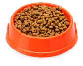 Cat food in bowl isolated on white — Stock Photo