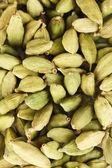 Green cardamom close-up — Stock Photo