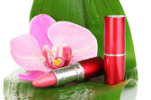 Lipsticks on green leaf isolated on white — Stock Photo