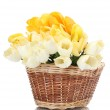 Beautiful tulips in basket isolated on white — Stock Photo #12123765