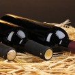 Bottles of great wine on hay on brown background — Stock Photo