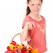 Portrait of beautiful little girl with tulips in basket isolated on white — Stock Photo