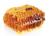 Sweet honeycomb with honey and bee, isolated on white — Stock Photo
