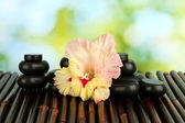 Spa stones with gladiolus bud on bamboo mat close-up — Stock Photo
