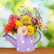 Purple watering cwith white polka-dot with flowers on green background — Stock Photo #12161718