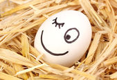 White egg with funny face in straw — Stock Photo