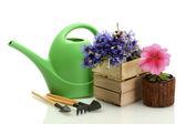 Regadera, herramientas y flores aisladas en blanco — Foto de Stock
