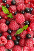 Ripe berries with mint, close up — Stok fotoğraf