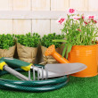 Gardening tools on wooden background — Stock Photo