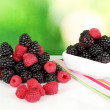 Hill raspberries and brambles on nature background — Stock Photo