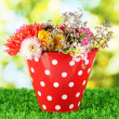 Stock Photo: Red bucket with white polka-dot with flowers on green background