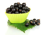 Fresh black currant in silicone mold isolated on white — Stock Photo