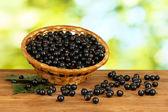Färska svarta vinbär i rotting korg på grön bakgrund närbild — Stockfoto