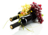 Butelek wina i dojrzałych winogron na białym tle — Zdjęcie stockowe