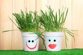 A pots of grass on wooden background — Stock Photo