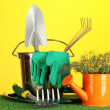 Garden tools on lawn on bright colorful background close-up — Stock Photo #12191072