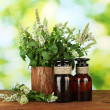 Essential oil and mint on green background close-up — Stock Photo #12191309