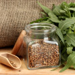 Jar of coriander seeds with rocket on canvas background close-up - Zdjęcie stockowe
