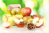 Honey and apples with cinnamon on natural background — Stock Photo