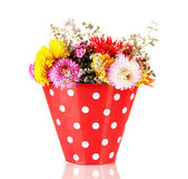 Red bucket with white polka-dot with flowers isolated on white — Stock Photo