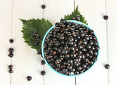 Fresh black currant in colorful bowl on white wooden background close-up — Stock Photo