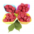 Fresh raspberries in silicone molds isolated on white - Stock Photo
