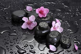 Spa stones with drops and pink sakura flowers on grey background — Stock Photo