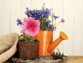 Sulama olabilir, araçları ve ahşap zemin çiçek — Stok fotoğraf