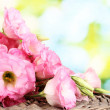 Bouquet of eustoma flowers, on green background - Stock Photo