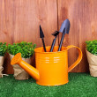 Stock Photo: Gardening tools on wooden background