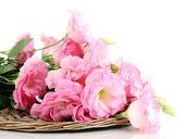 Bouquet of eustoma flowers, isolated on white — Stock Photo