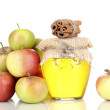 Stock Photo: Honey and apples with cinnamon isolated on white
