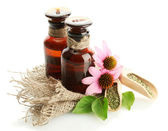 Medicine bottles with purple echinacea , isolated on white — Stock Photo