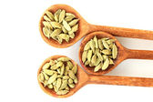 Green cardamom in wooden spoons on white background close-up — Stock Photo