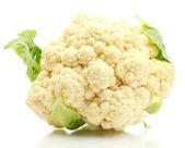 新鲜菜花上白色隔离 — 图库照片