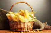 Fresh corn in basket, on wooden table, on grey background — Stock Photo