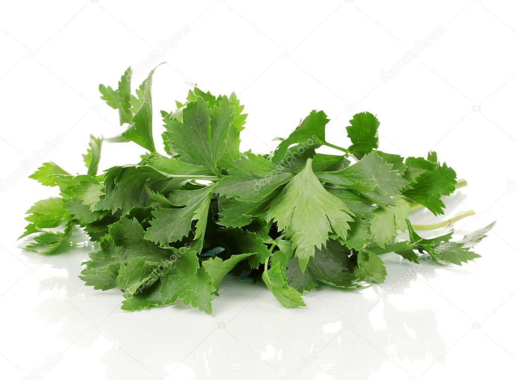 Fresh celery isolated on white — Stock Photo #12387965