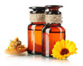 Medicine bottles and calendula, isolated on white — Foto Stock