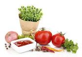 静物西红柿番茄酱和孤立在白色的草药 — 图库照片